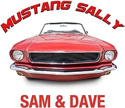 ride sally ride song