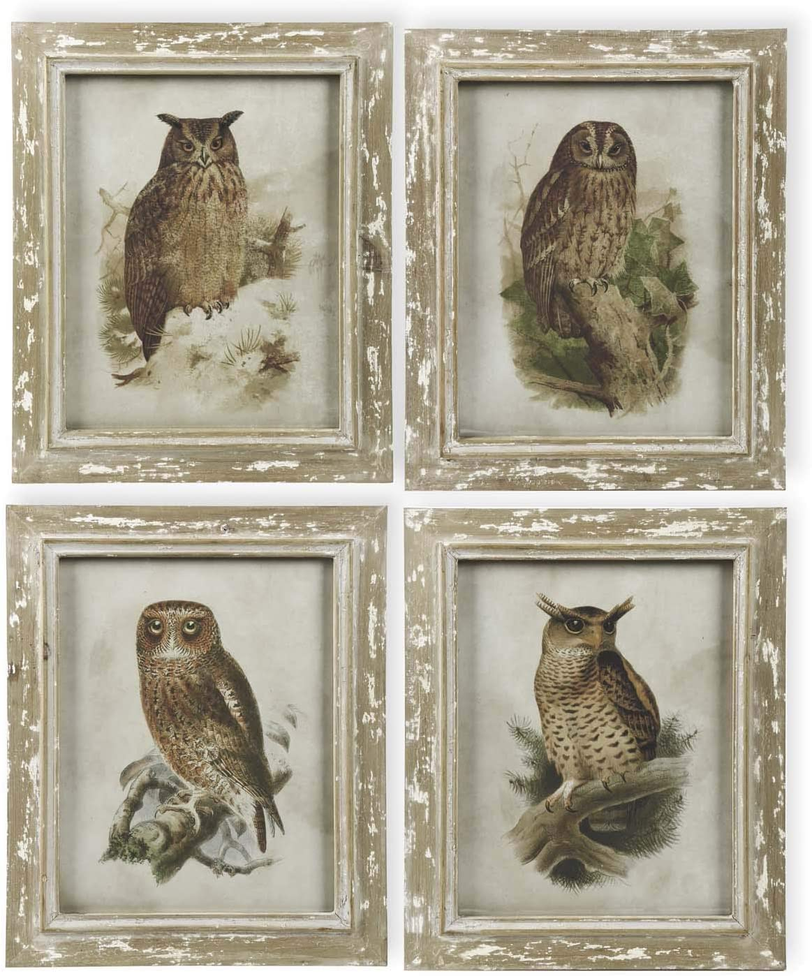KK Ranking TOP7 Interiors 40969A 21 Inch Owl Assorted Max 76% OFF Distressed Framed Wood