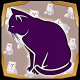 Editor de fotos de corte de gato