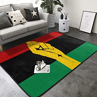 FANTASY SPACE Bedroom Living Room Kitchen Extra Large Area Rug Home Art - Black Power Pan African Flag Floor Mat Doormats Quick Dry Tub Shower Bath Rug Exercise Mat Throw Rugs Carpet