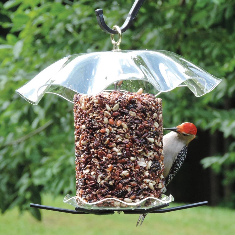 Bird's Choice Clear Cylinder Seed Cake Feeder, Medium, Clear