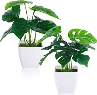 CEWOR 2 Packs Artificial Mini Greenery Potted Plants Fake Monstera Deliciosa and Scindapsus Leaves in Small Plastic Pot fo...