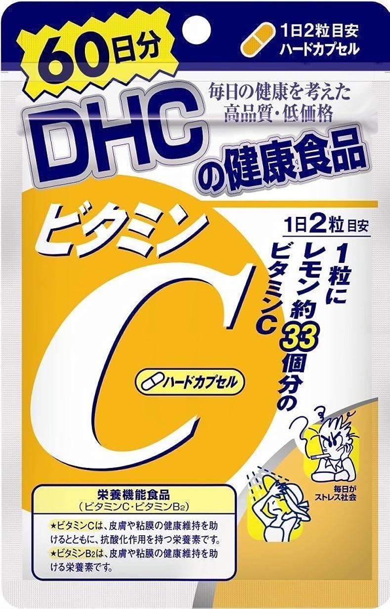 葉を拾うゲートマイルドDHC ビタミンC(ハードカプセル) 60日分 120粒×1袋入×(2ケース)