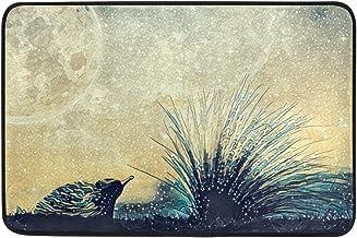 Mydaily Echidna Beach Starry Sky Moon Doormat 15.7 x 23.6, Living Room Bedroom Kitchen Bathroom Decorative Lightweight Foa...