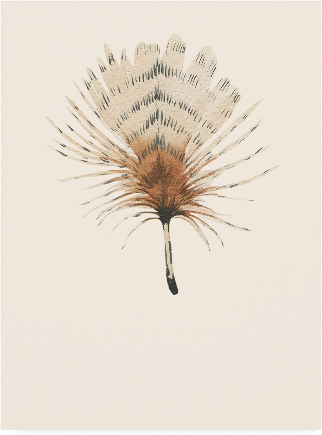 Trademark Fine Art IC01709C1419GG Feather 06 by by by Incado, 14x19