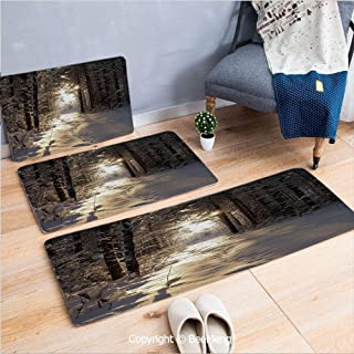 3 Piece Anti-Skid mat for Bathroom Rug Dining Room Home Bedroom,Winter,Christmas Season with Snow and Frozen Forest Sun Rays Very Cold Woods Scenery Image,16x24/18x53/20x59 inch