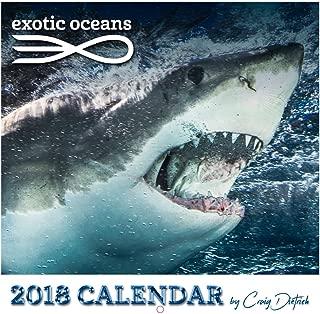 2018 calendar ocean