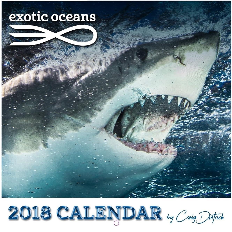 継承刺す選択Craig Dietrichのエキゾチックな海のカレンダー 2018年
