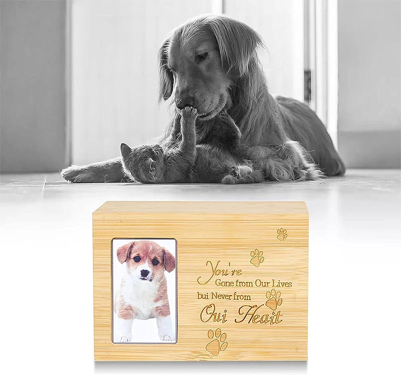 Urnas para Mascotas para Cenizas De Perros, Recuerdo De Cremación con Hermoso Tallado, Texto Y Estampado De Patas, Monumento De Madera para Entierro En Cementerio O Nicho