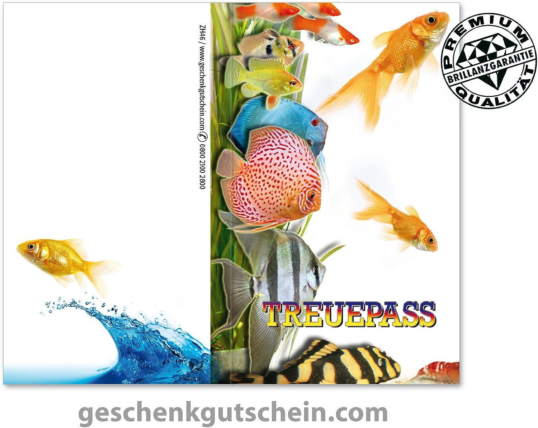 100 100 100 Stk. Kundenkarten für den Zoofachhandel, Tierärzte, Tierbedarf ZH46 B076BK5PWK   Passend In Der Farbe    Deutschland Shops    Kaufen Sie online  4fbb54