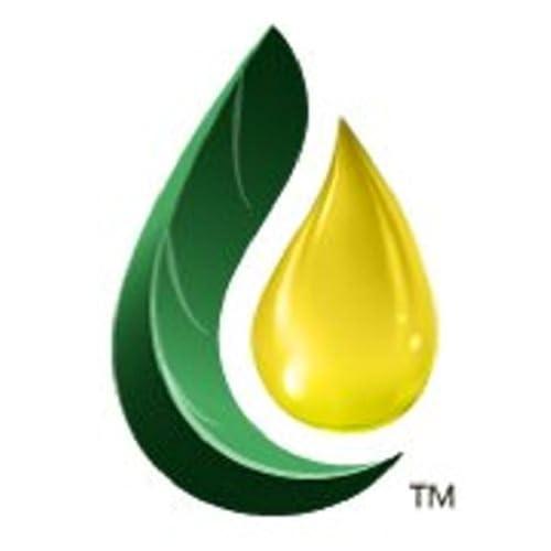 Essential Oil Living, Loving, & Learning