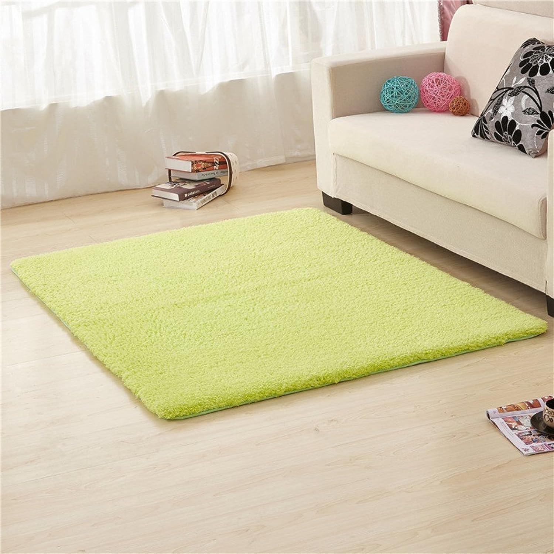 Doormats Kitchen Bathroom Water-Absorption Anti-Skid mat Bedroom Blanket for Bedroom -H 100x200cm(39x79inch)