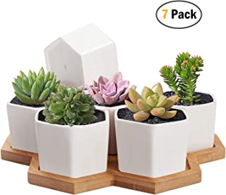 Succulent Planter, MoonLa 2.75 Inch Succulent Plant Pots, Set of 7 White Ceramic Hexagon Succulent Cactus Planter Pots with Bamboo Tray(Plants NOT Included)