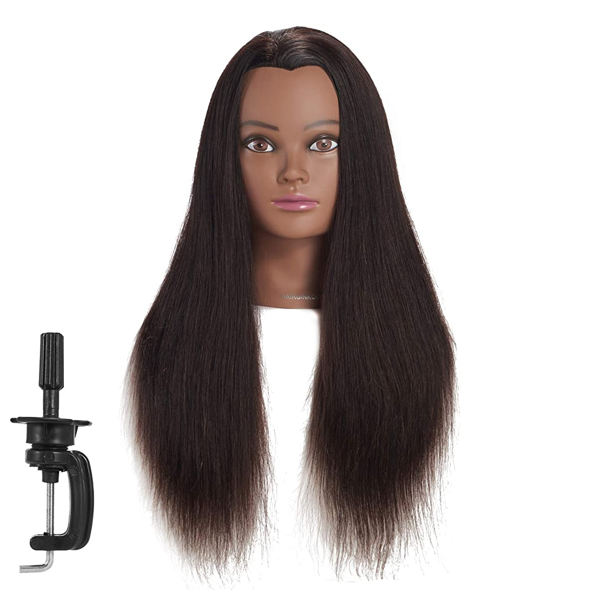Hairginkgo Mannequin Head 24