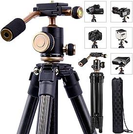 Explore portable tripods for cameras