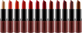 SHANY Lipstick Set of 12 Long-lasting and Moisturizing Creamy Colors with Various Finishes - Warm Wishes