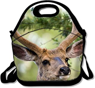 Deer Lunch Bags/Lunch Boxes, Waterproof Outdoor Travel Picnic Lunch Box Bag Tote