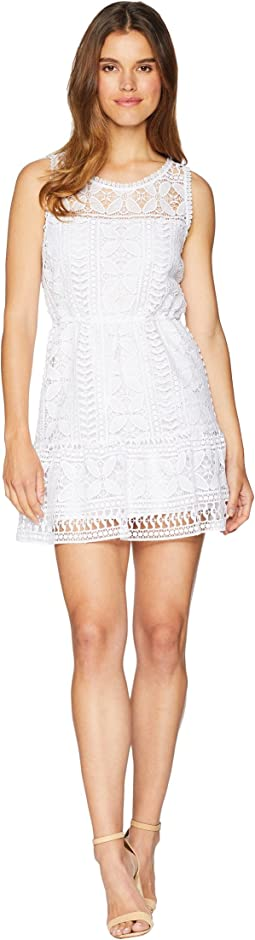 Sandra Lace Fit and Flare Dress