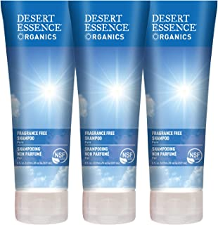 Desert Essence Fragrance Free Shampoo - Pure - 8 Fl Ounce - Pack of 3 - Unscented - Gloss & Shine - Strengthens Hair - Soft & Revitalized - Green Tea - Vitamins & Minerals - Jojoba Oil