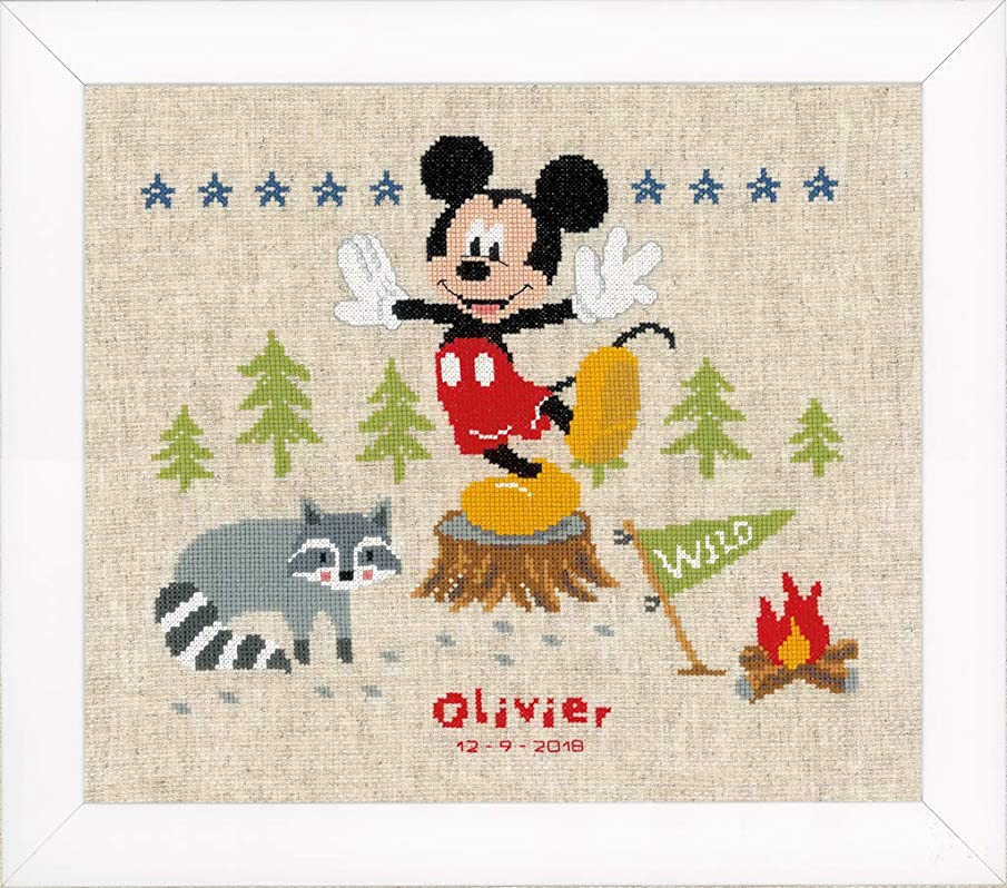 Disney 'A Woodsy Adventure' Birth Record Counted Cross Stitch Kit