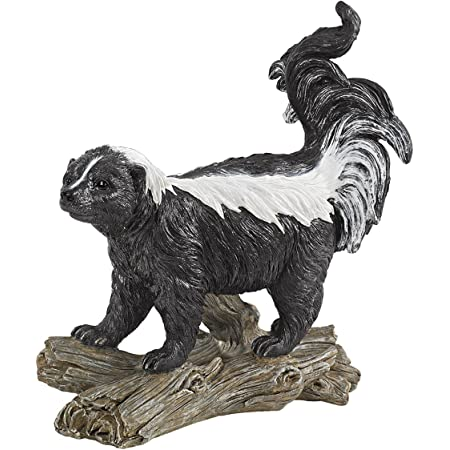 Amazon Com Design Toscano Something Is In The Air Skunk Welcome Statue Multicolored Statues Garden Outdoor