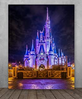 Poster - Cinderella's Castle Night Photo - Choose Unframed Poster or Canvas - Makes a Great Gift for Disney Fans