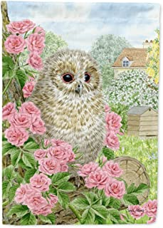 Caroline's Treasures ASA2109CHF Tawny Owlet Canvas House Size Flag, Multicolor, Large