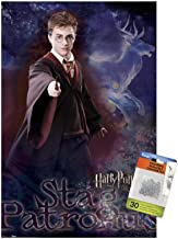 Harry Potter and the Order of the Phoenix - Patronus Wall Poster with Push Pins