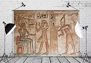BELECO 7x5ft Wall Painting Backdrop Ancient Egyptian Gods and Hieroglyphs in Wall Painting Egyptian Tomb Phtography Backdrop for Party Decoration Photoshoot Photo Background Props