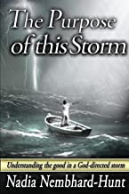 The Purpose of This Storm: Understanding the good in a God-directed storm