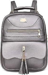 PU Leather Tassel Women's Backpack Travel School Shoulder Bag Daypack (Color : Silver)