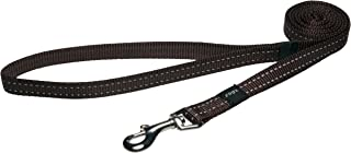 "Reflective Dog Leash for Medium Dogs, 5/8"" wide, 6' long, Brown"