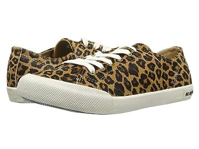 SeaVees Monterey Sneaker Mulholland (Leopard) Women