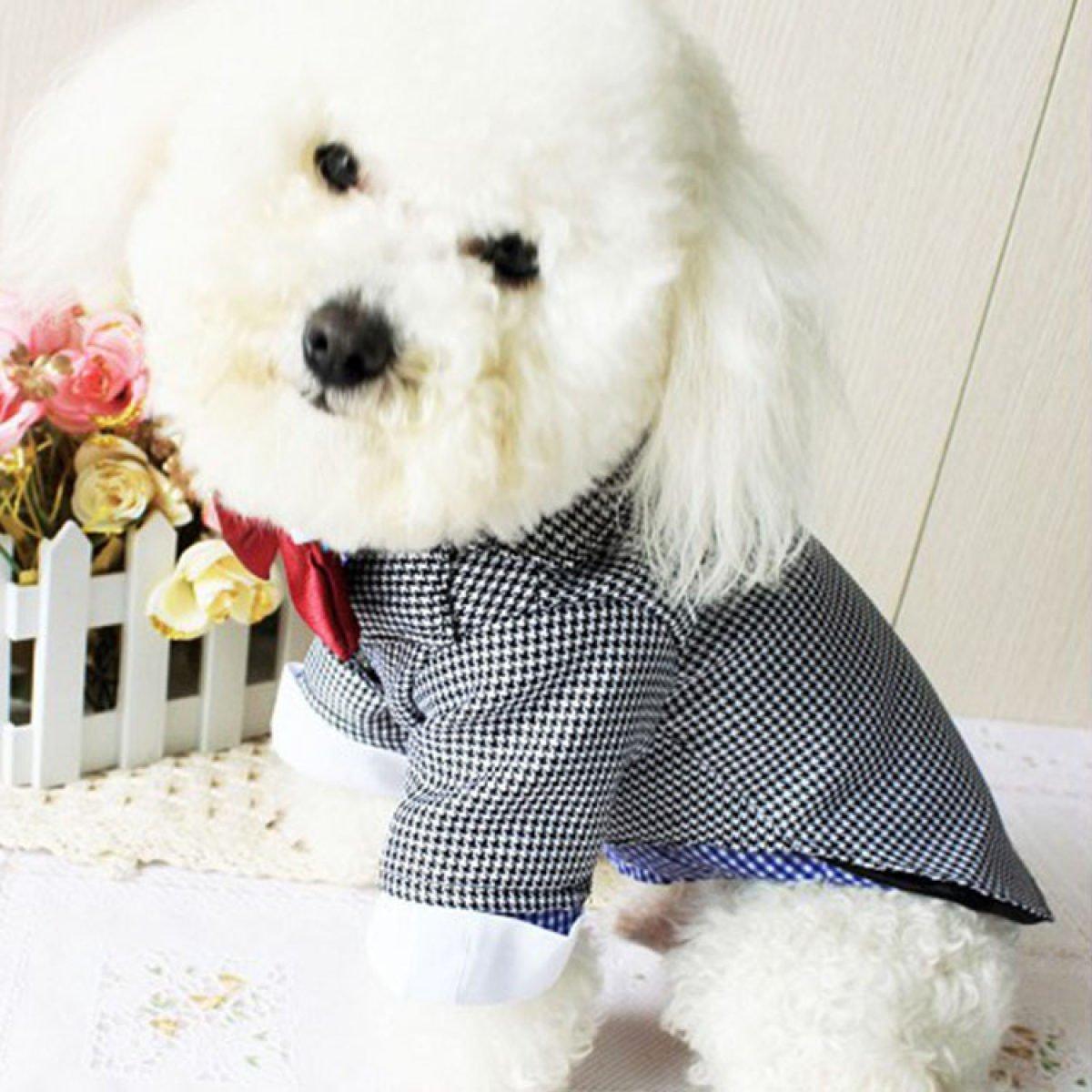 Dog WenL Camisas Camisas Gatos Mascotas Ropa Para Perros Perro Camisetas Del Perrito Ropa Para Perros Ropa De Perrito,L: Amazon.es: Deportes y aire libre