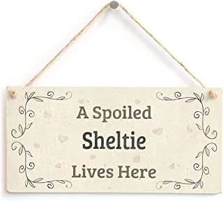 """Sponsored Ad - Meijiafei A Spoiled Sheltie Lives Here - Lovely Home Accessory Dog Gift Sign 10""""x5"""""""