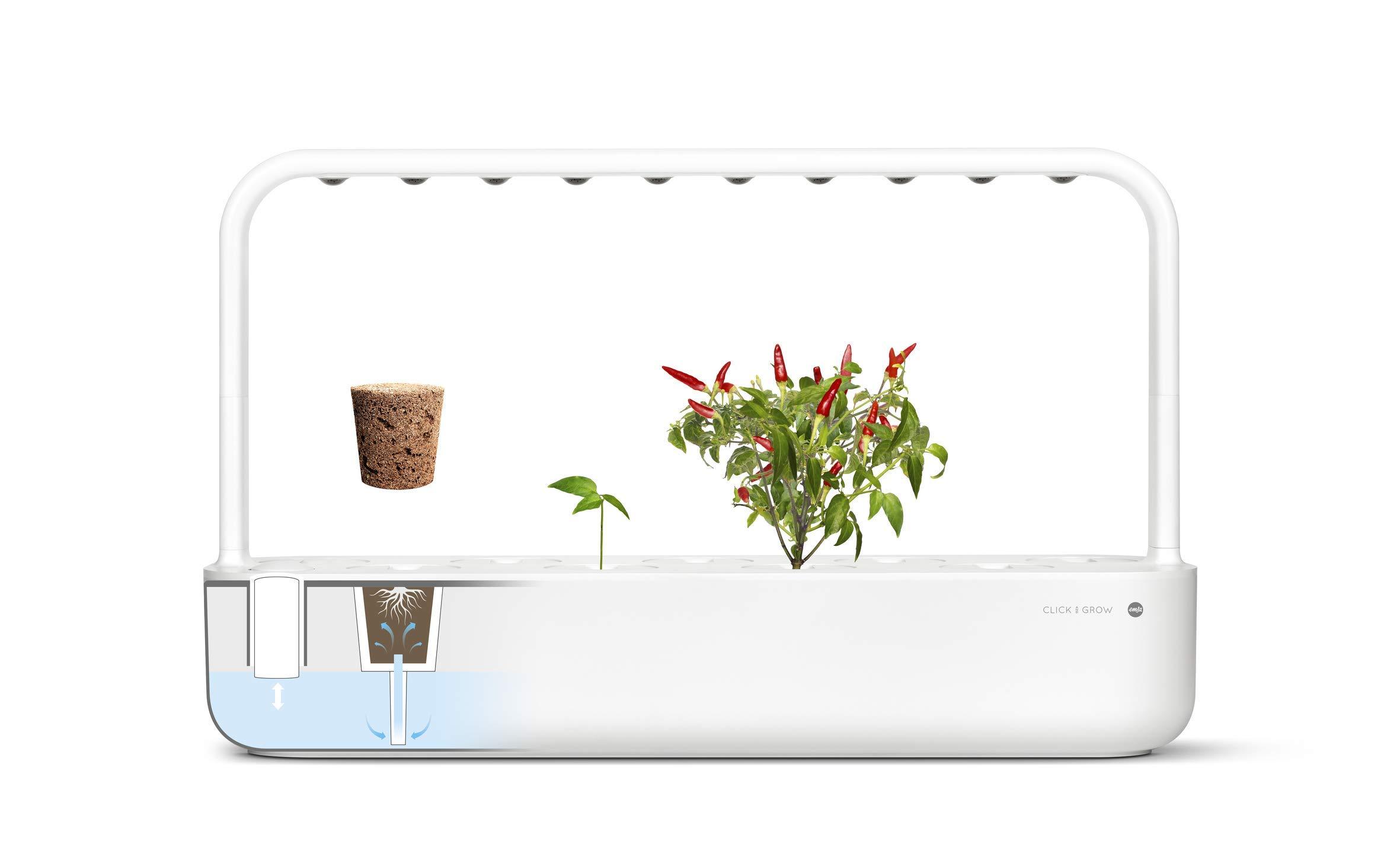 Emsa Click & Grow Smart Garden 9 unidades M52619, Semillas Smart ...