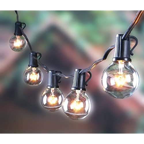 Hanging String Lights: Amazon.com