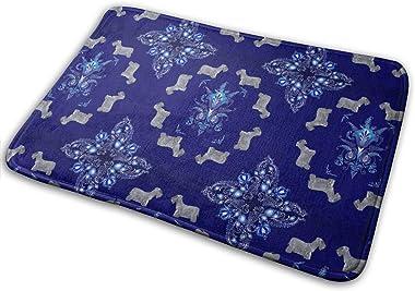 Cesky Terrier Carpet Non-Slip Welcome Front Doormat Entryway Carpet Washable Outdoor Indoor Mat Room Rug 15.7 X 23.6 inch