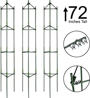 Best 72 inch tomato cage Reviews