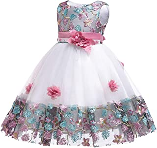 Flower Girls Dresses 0-9 Years Baby Toddler Embroidery Formal Dress