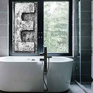 """C COABALLA Ethylene Film Printing Design Window Film,Letter F,Suitable for Kitchen, Bedroom, Living Room,Ancient Primitive Featured Stone Age Letter Character Printing,24""""x48"""""""