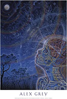Alex Grey - Wonder - Poster