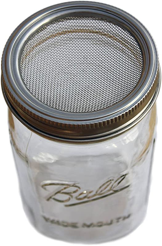 Curved Rust Proof Sprouting Lid And Band With Jar Includes Quart Ball Mason Jar