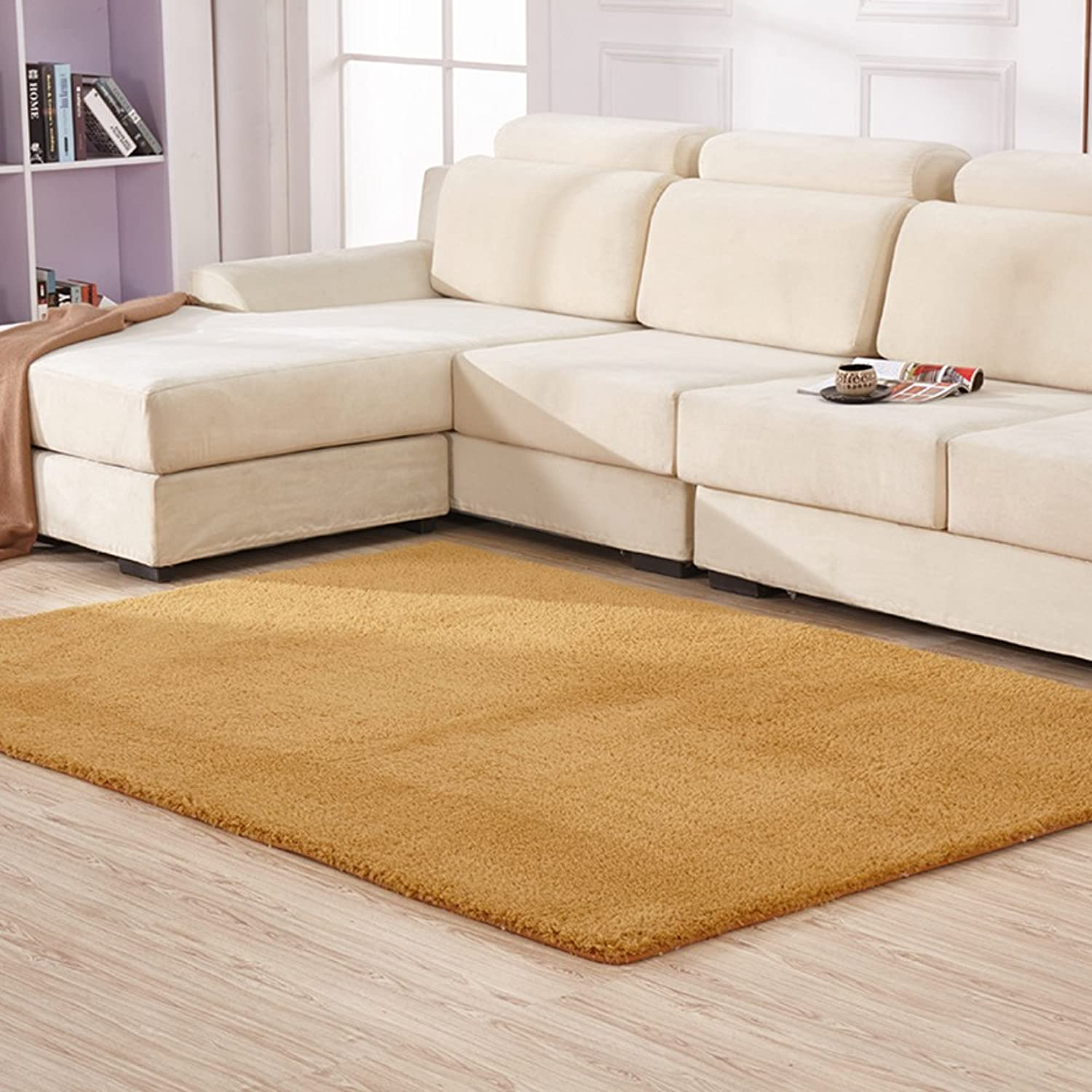 Simple thickened plush carpet Bedroom Living room Tea table blanket Wall-to-wall Bedside blanket Rectangular sofa carpet mat-C 80x160cm(31x63inch)