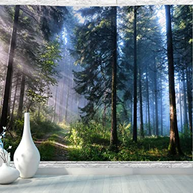 BJYHIYH Misty Forest Tapestry Wall Hanging Nature Landscape Tapestry Sunshine Through Tree Tapestries for Bedroom Living Room