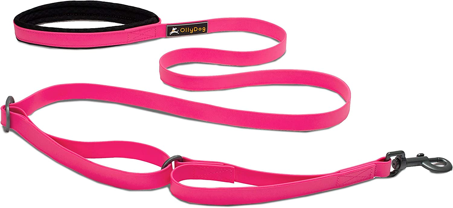 OllyDog Spasm price Tilden Dog Leash Fixed Length Durabl Lightweight ft 6 Spring new work one after another
