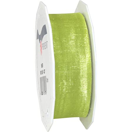 Decoration Ribbon for Presents 27 Yards Gift Wrap for Every Occasion Pattberg Sheer Organza Mint Green 1 inch Width C.E Accessories for Decoration /& Handicrafts 25mm-25m