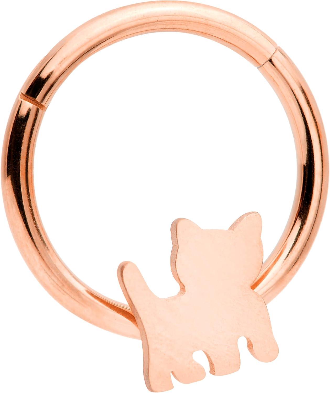 Body Candy 16G Septum Piercing Steel Hinged Segment Ring Cartilage Hoop Cat Nose Hoop 10mm