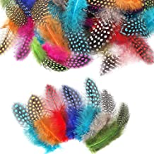 Outuxed 250pcs 3-6 Inches Colorful Natural Spotted Feathers Multicolor Hat Feathers for DIY Crafts, Jewelry and Clothing Decoration