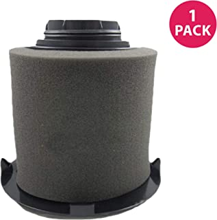 Crucial Vacuum Pre-Filter Replacement - Compatible with Dirt Devil Part # 1JW1100000 & 2JW1000000, Dirt Devil F16 HEPA Style Filter & Foam Pre-Filter - Durable, Compact, Washable (1 Pack)